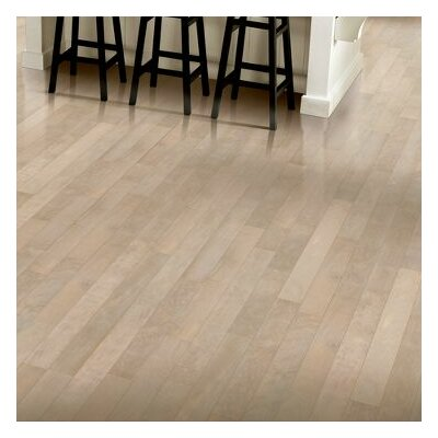 Armstrong 5 Engineered Birch Hardwood Flooring In Driftscape White Reviews Wayfair
