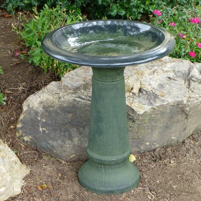 Tierra Garden Fiber Clay Birdbath U0026 Reviews | Wayfair