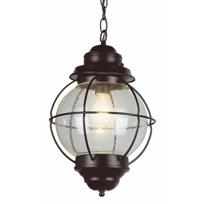 Beachcrest Home Ravenwood 1 Light Outdoor Hanging Lantern U0026 Reviews    Wayfair