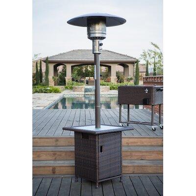 Permasteel 40,000 BTU Propane Patio Heater U0026 Reviews | Wayfair
