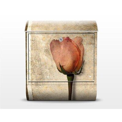 PPS. Imaging GmbH Briefkasten Inner Rose mit Zeitungsfach