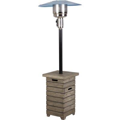 Bond Alondra Park Stainless Steel Propane Patio Heater | Wayfair