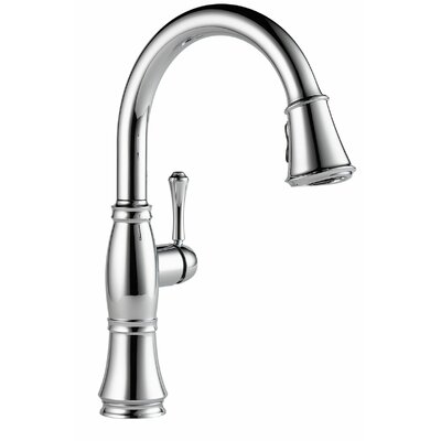 Delta Cassidy Single Handle Pull Down Kitchen Faucet with Spray ...