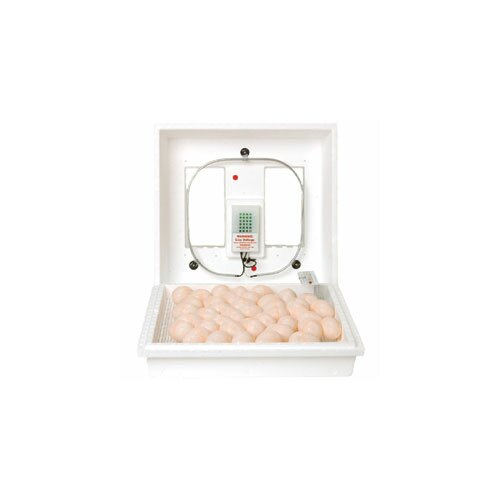 Still Air Egg Incubator by Miller Mfg