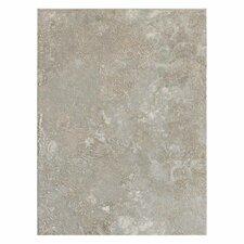 Sandalo 9'' x 12'' Ceramic Field Tile in Castillian Gray