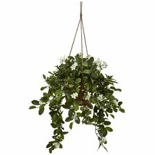 Mixed Stephanotis Hanging Faux Plant in Basket
