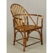 Cool Timeless Windsor Arm Chair (Set of 2)