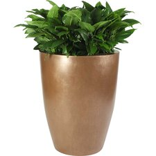 Raleigh Plastic Pot Planter
