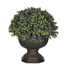 Artificial Boxwood Half-Ball Topiary in Urn