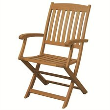 Spontaneity Folding Arm Chair (Set of 2)