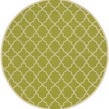 Viviana Green/Ivory Indoor/Outdoor Area Rug