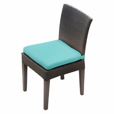 Napa Dining Side Chair with Cushion (Set of 2) (Set of 2)