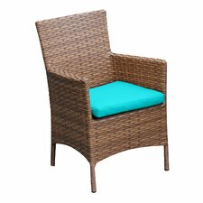 Laguna Dining Arm Chair with Cushion (Set of 2)