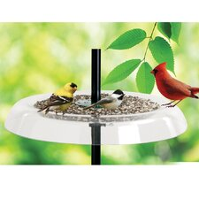 Giant Seed Tray Bird Feeder and Squirrel Guard