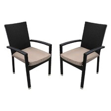 Outdoor Patio Furniture Dining Chair with Cushion (Set of 2)