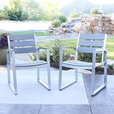 Salvatore Grey Patio Chairs (Set of 2)