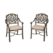 LaMoure Dining Arm Chair with Cushion (Set of 2)