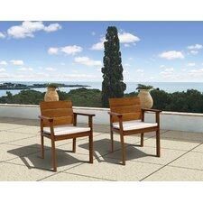 Elsmere Dining Arm Chair with Cushion (Set of 2)