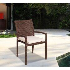 Modern Aquia Creek Dining Arm Chair with Cushion (Set of 4)