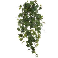"33"" Hanging Grape Ivy Plant"