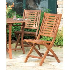 Maxillaria Folding Dining Side Chair (Set of 2)