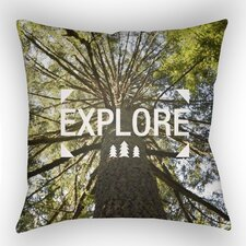 Green Accent Indoor/Outdoor Throw Pillow