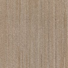 """Plymouth 24"""" x 24"""" Carpet Tile in Living Fast"""