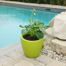 Modesto Plastic Pot Planter