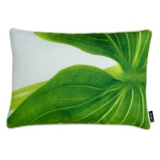 Arum Indoor/Outdoor Lumbar Pillow