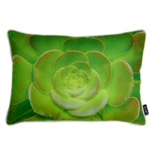 Cactus Flower Indoor/Outdoor Lumbar Pillow