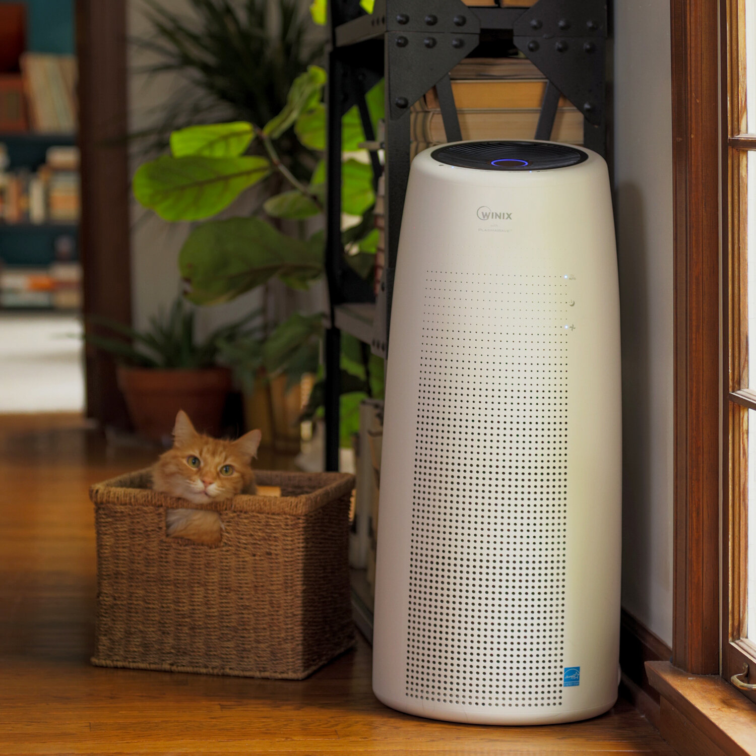 Winix Winix Nk100 True Hepa Air Purifier 8809154399297 Ebay