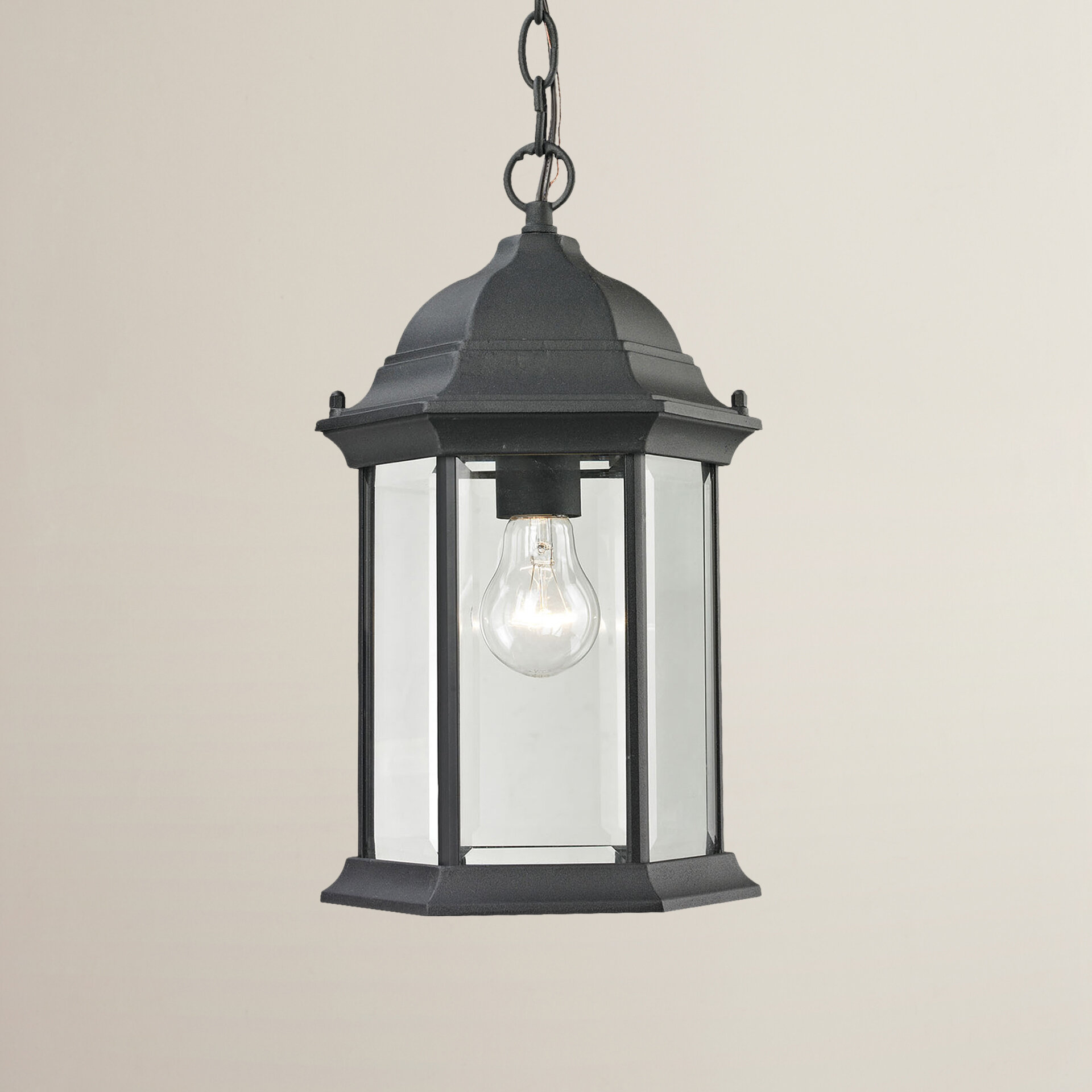 Details about charlton home altagore 1 light outdoor hanging lantern