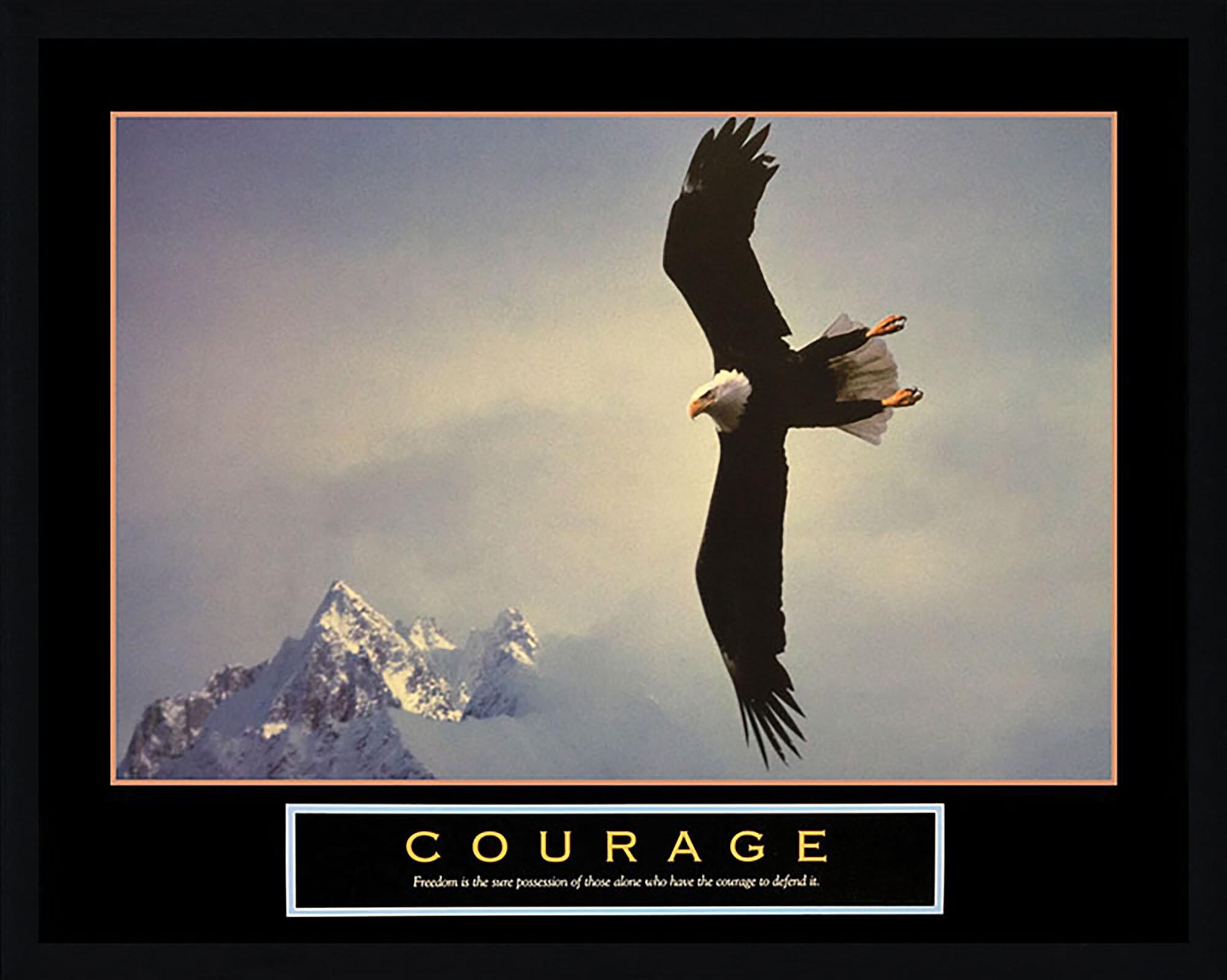 Latitude Run Courage Bald Eagle Framed Graphic Art Print