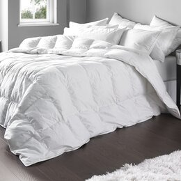 Bedding | Wayfair.co.uk