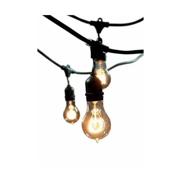 String Lights Indoor Outdoor : Harlow Indoor/Outdoor String Light & Reviews Joss & Main
