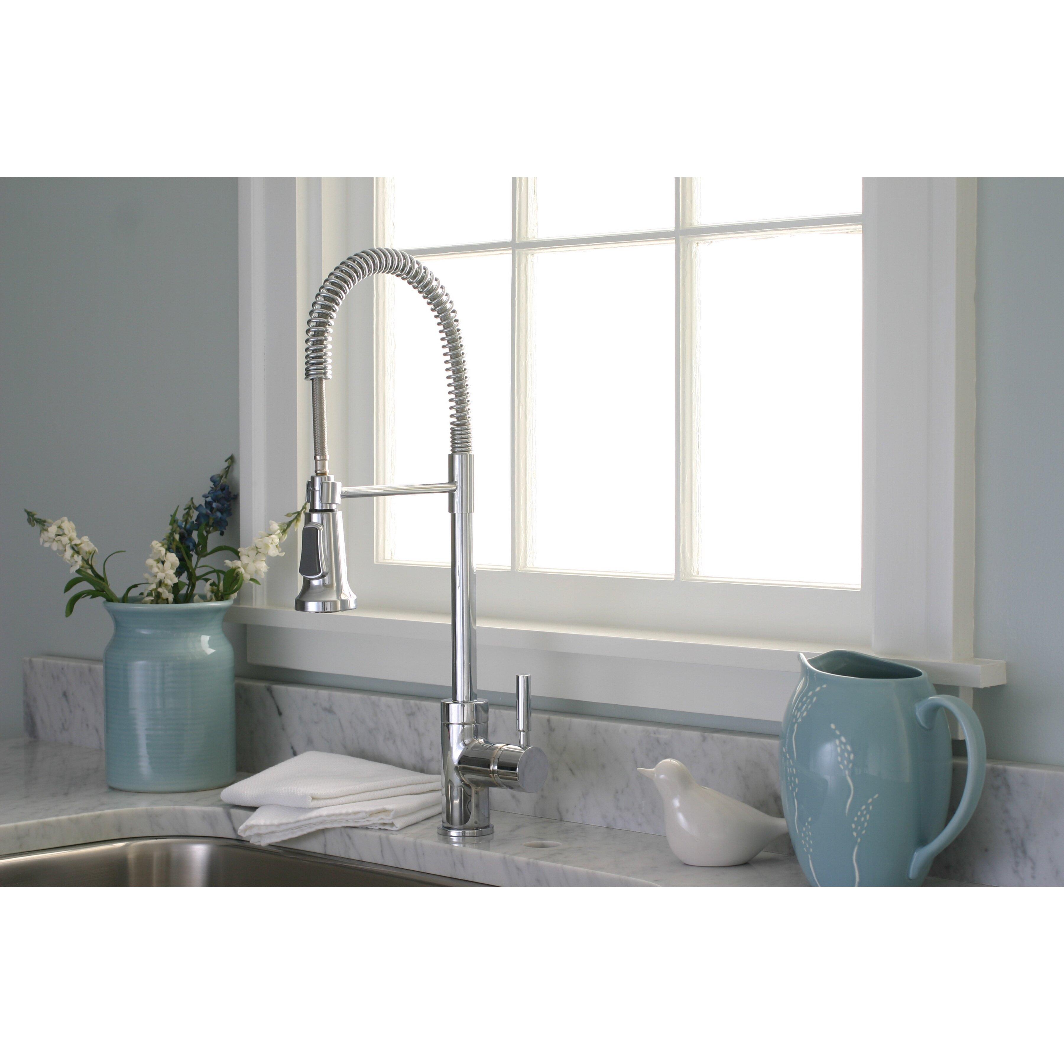 Danze Kitchen Faucets Reviews Premier Faucet Essen One Handle Single Hole Pull Down Bar Faucet