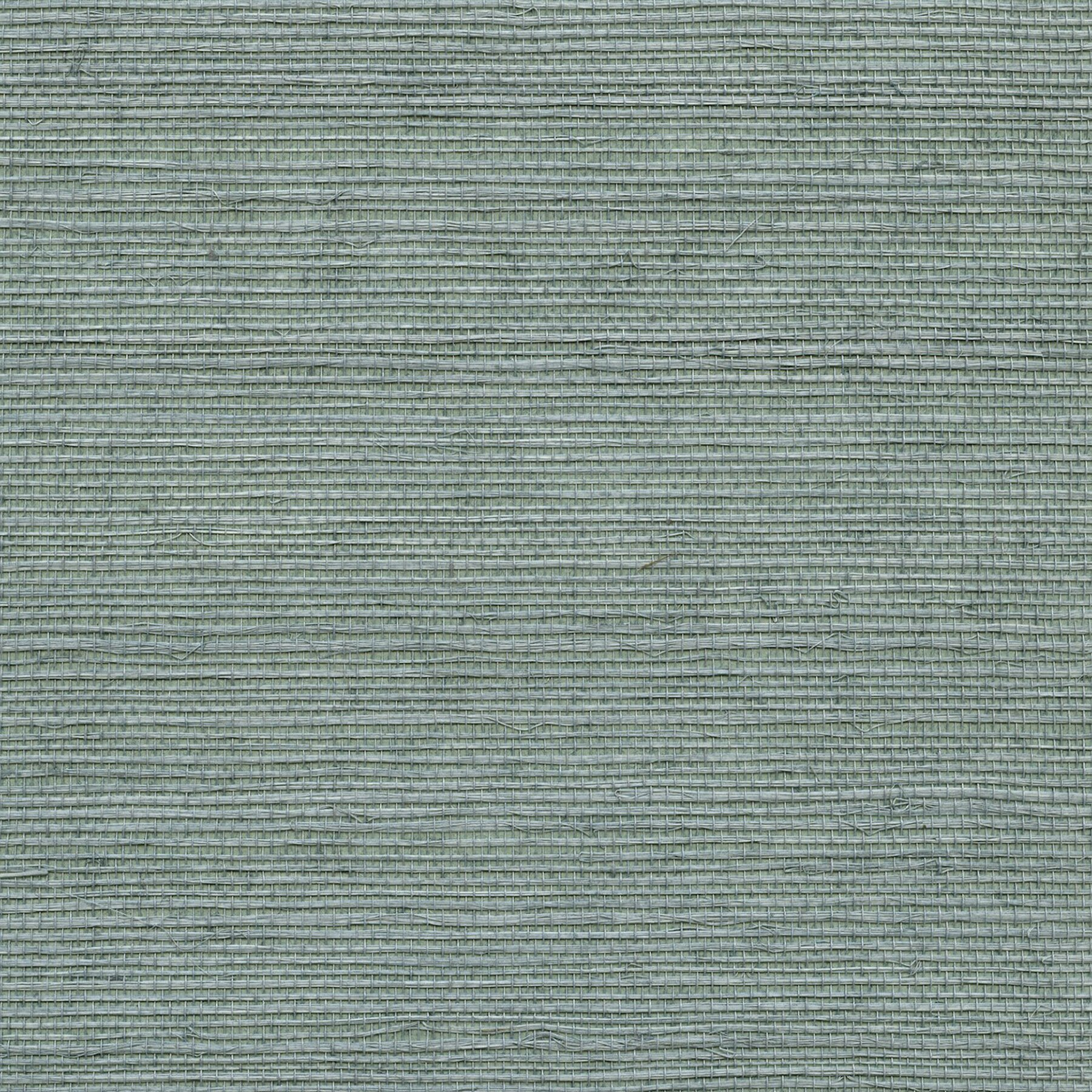 Silver Grasscloth Wallpaper: Brewster Home Fashions Sand Dollar Wisteria Grasscloth 24