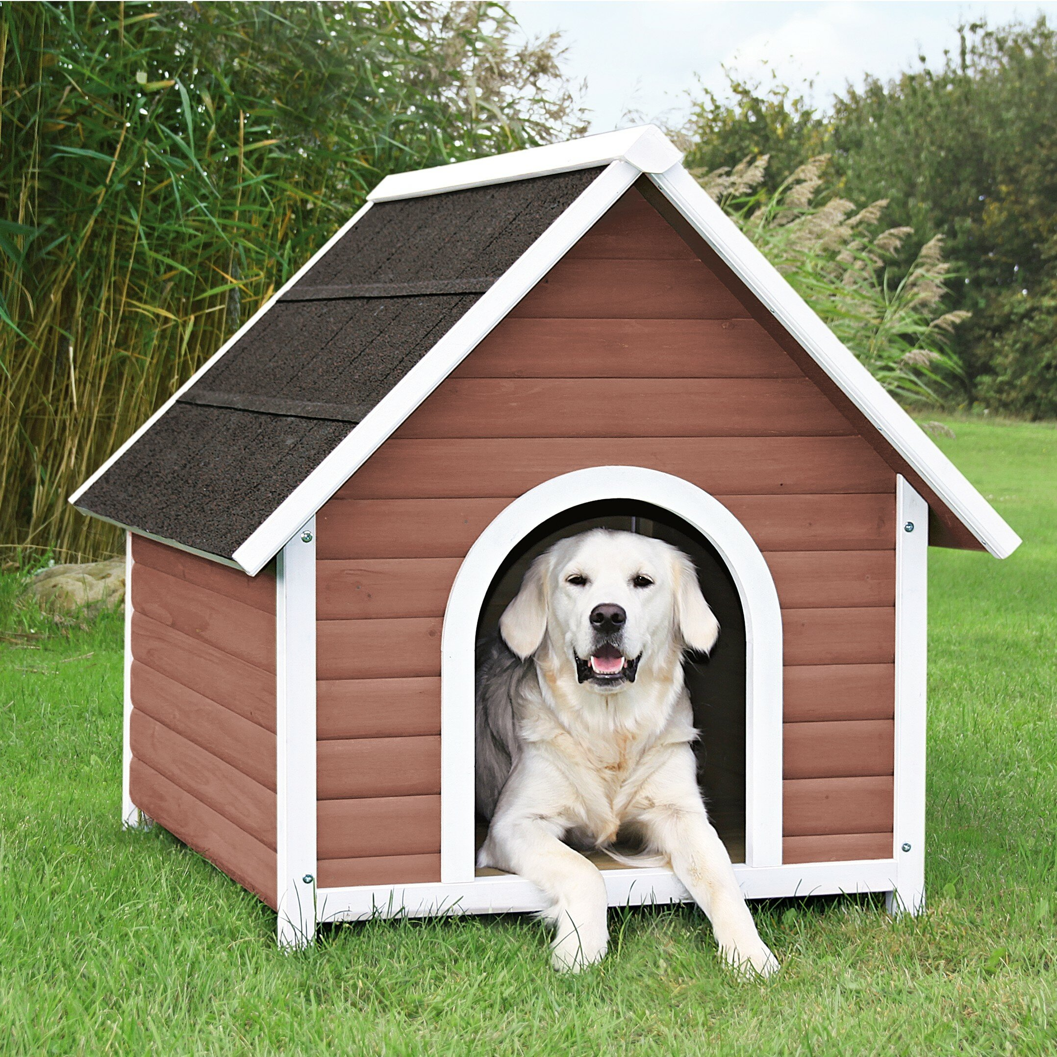 DogS House