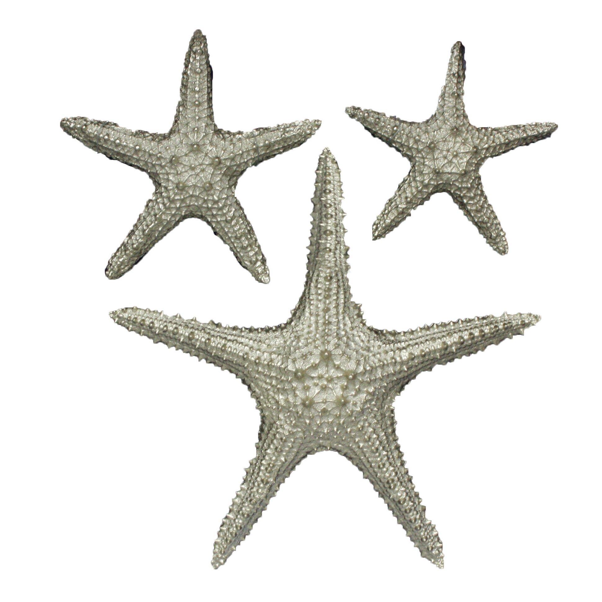 Fetco Home Decor Yelton 3 Piece Starfish Wall Du0026eacute ...