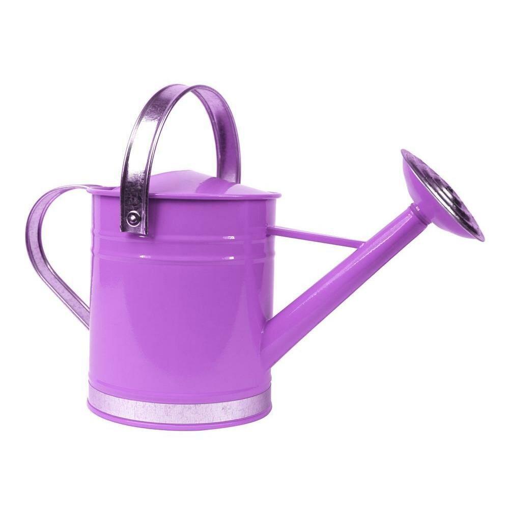 Arcadia Garden Products 05 Gallon Basic Watering Can Reviews