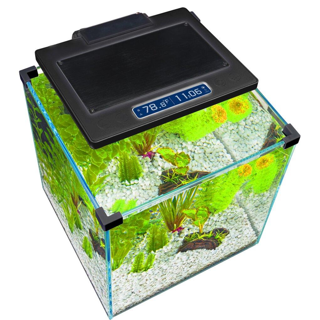 Desk aquarium fish tank - Penn Plax Simplicity 5 5 Gallon Desktop Aquarium Tank