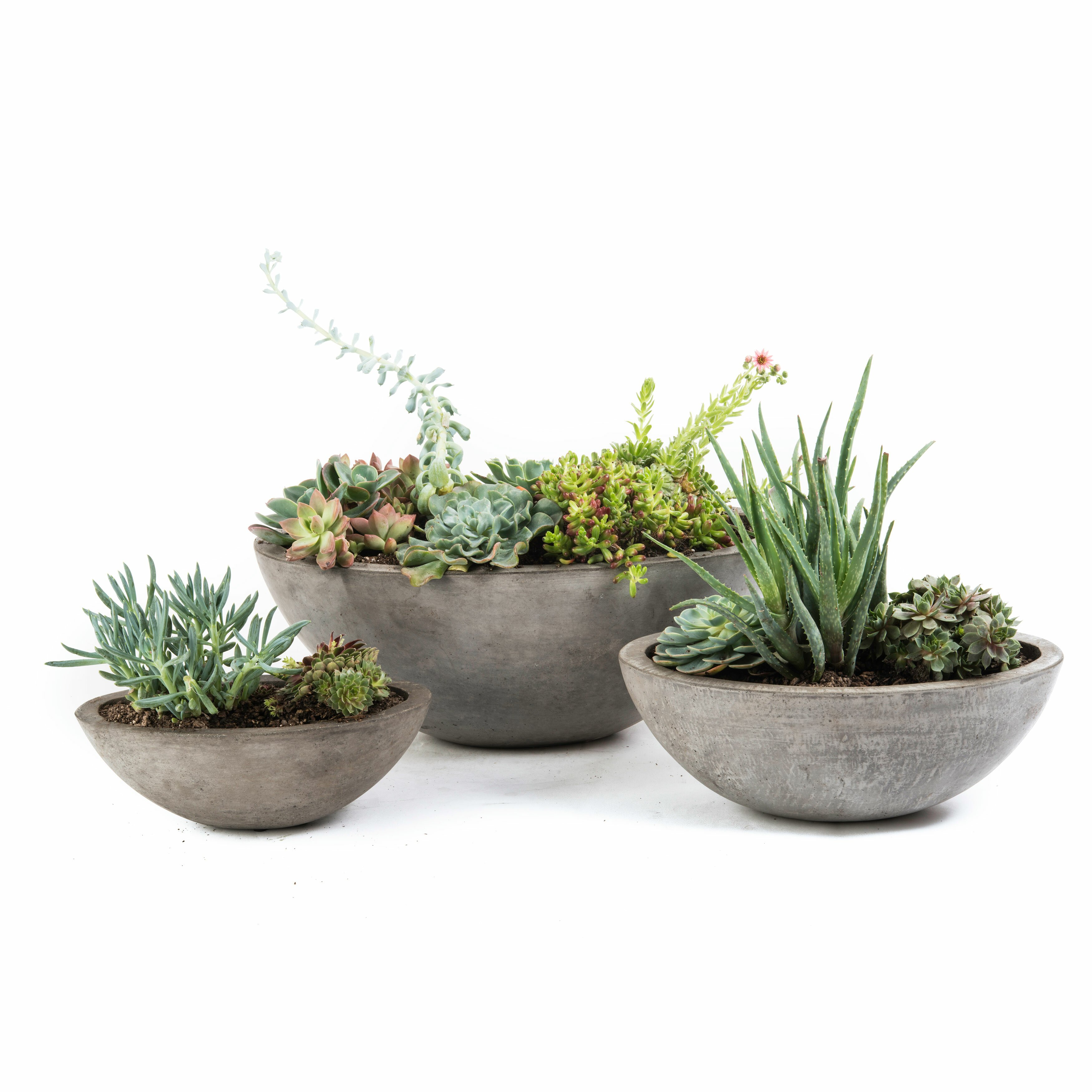 My Spirit Garden Yano 3 Piece Oval Pot Planter Set