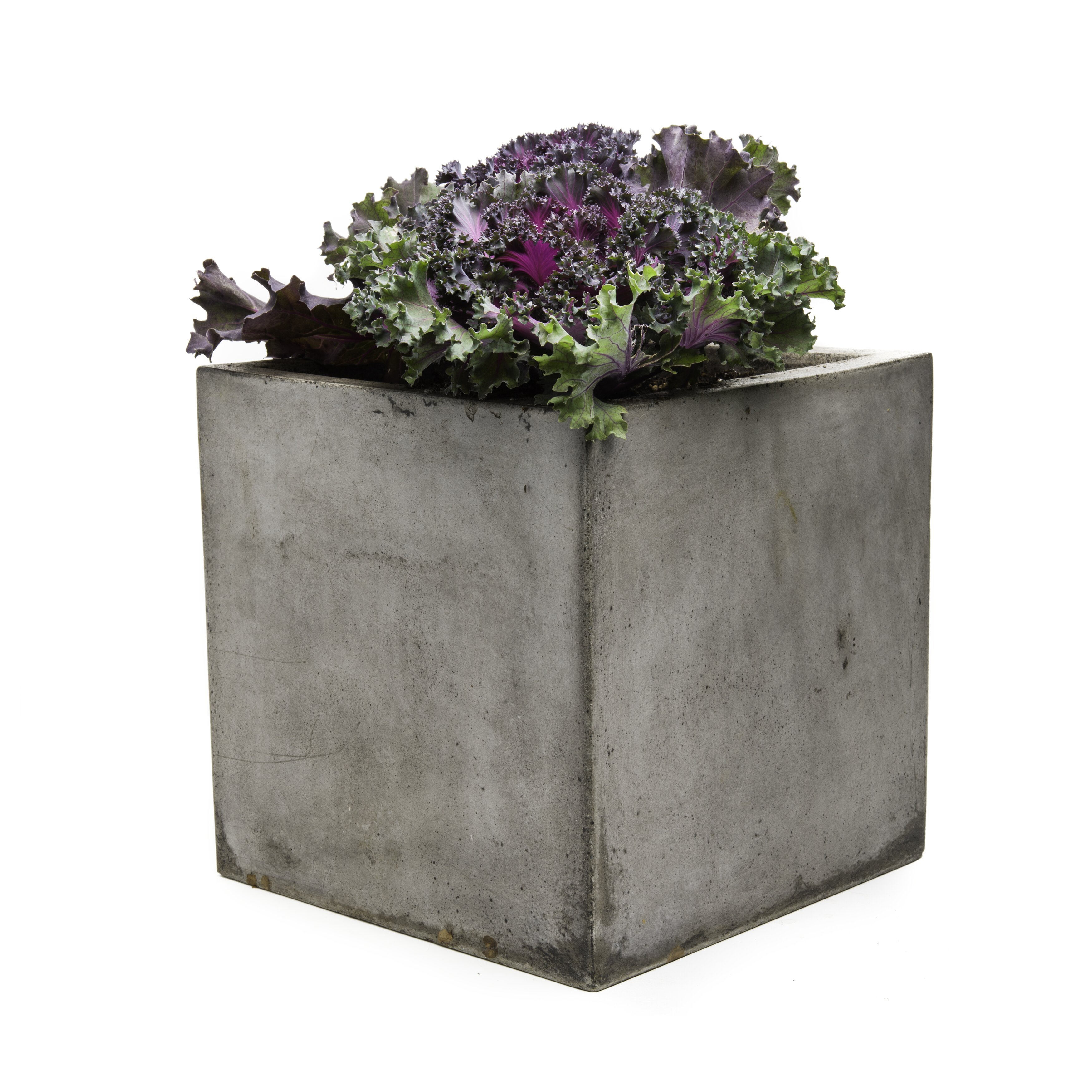 My Spirit Garden Cub Composite Planter Box Reviews Wayfair