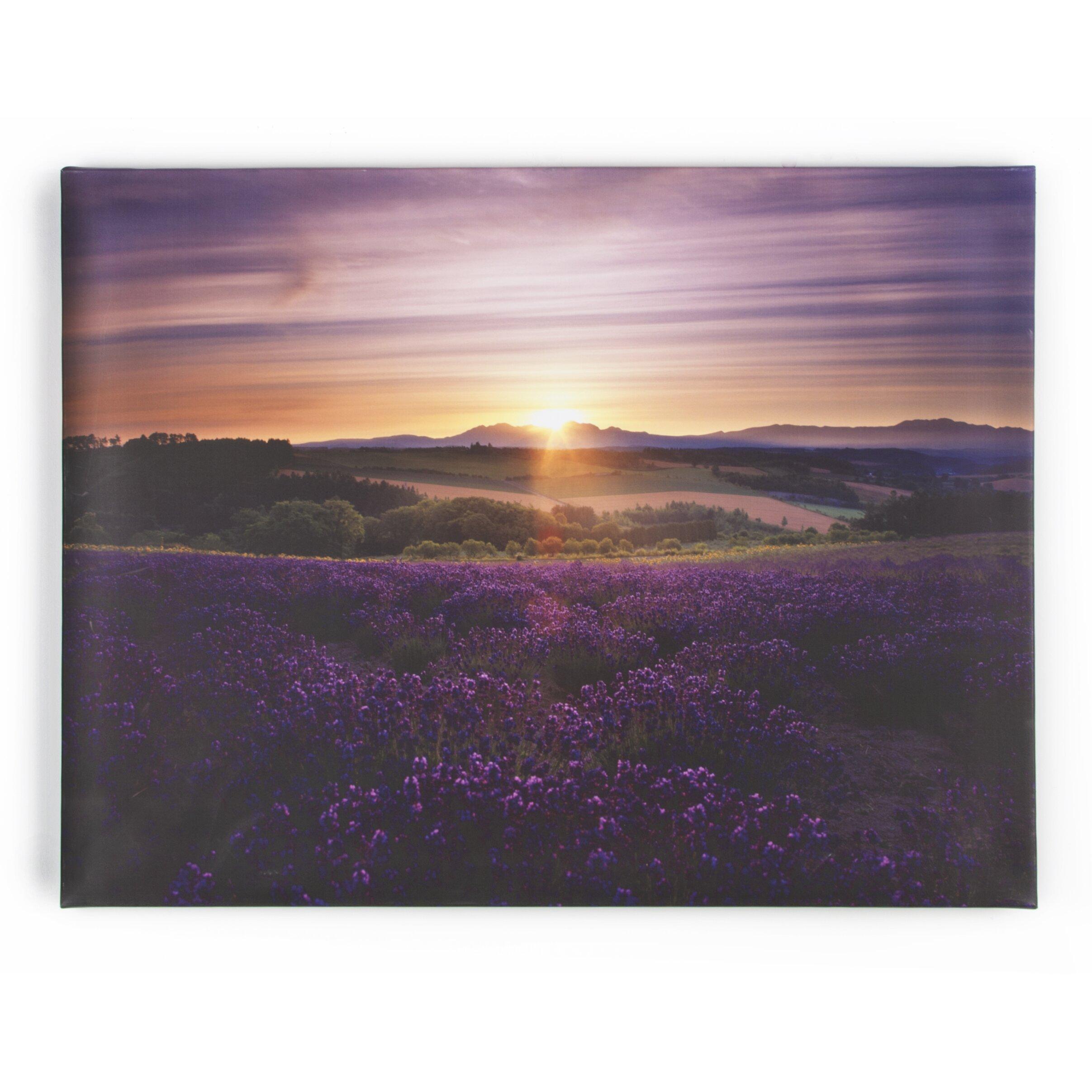 Plum Accessories For Bedroom Purple Wall Art Youll Love Wayfair