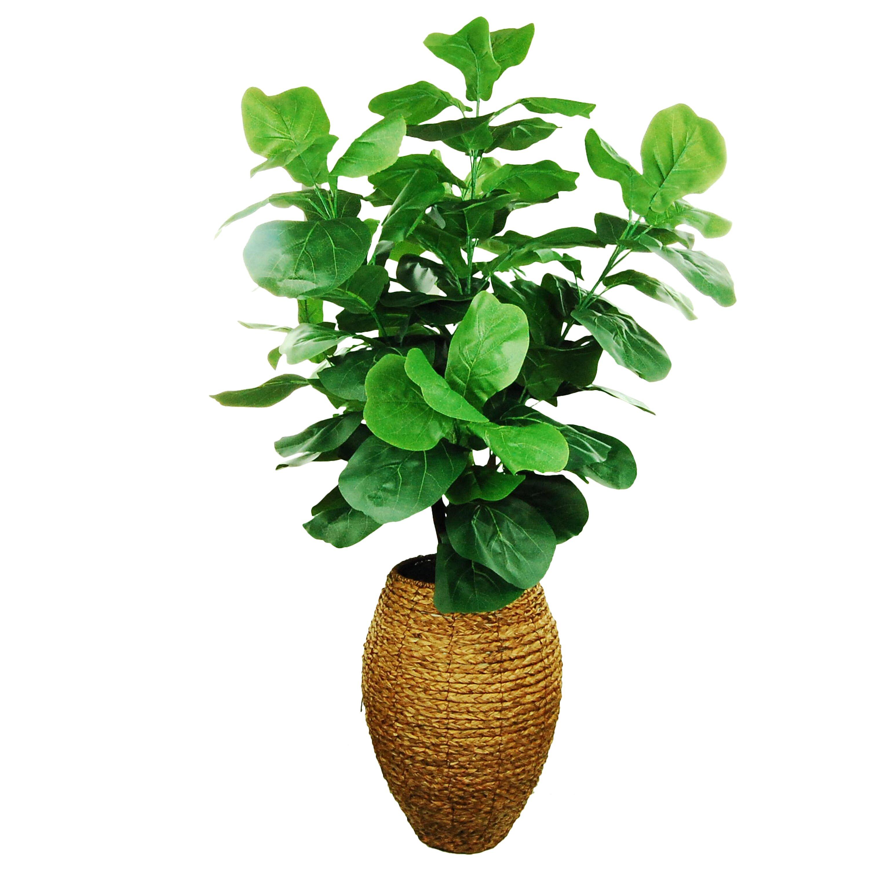 LCG Florals Fiddle Leaf Fig