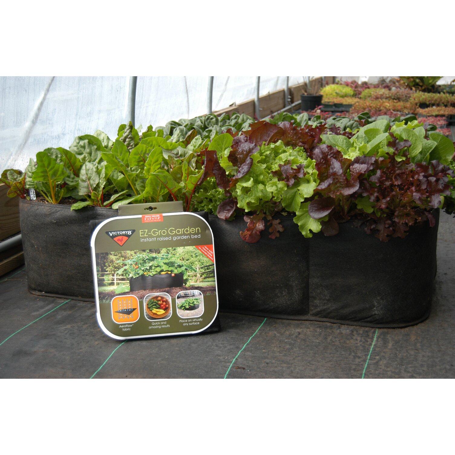 Victory8Garden EZ Gro Raised Garden Planter Reviews Wayfair
