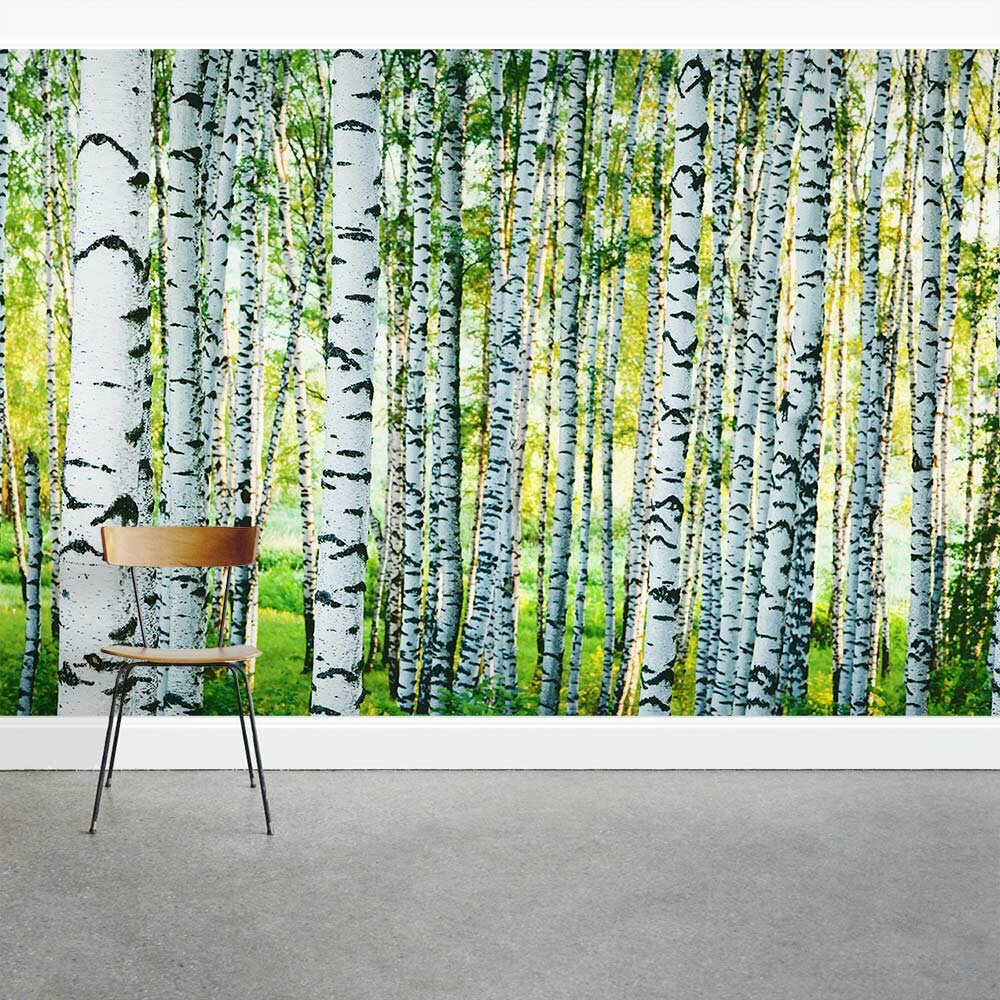 Wallums wall decor spring birch tree forest 8 39 x 144 3 for Birch tree forest wall mural