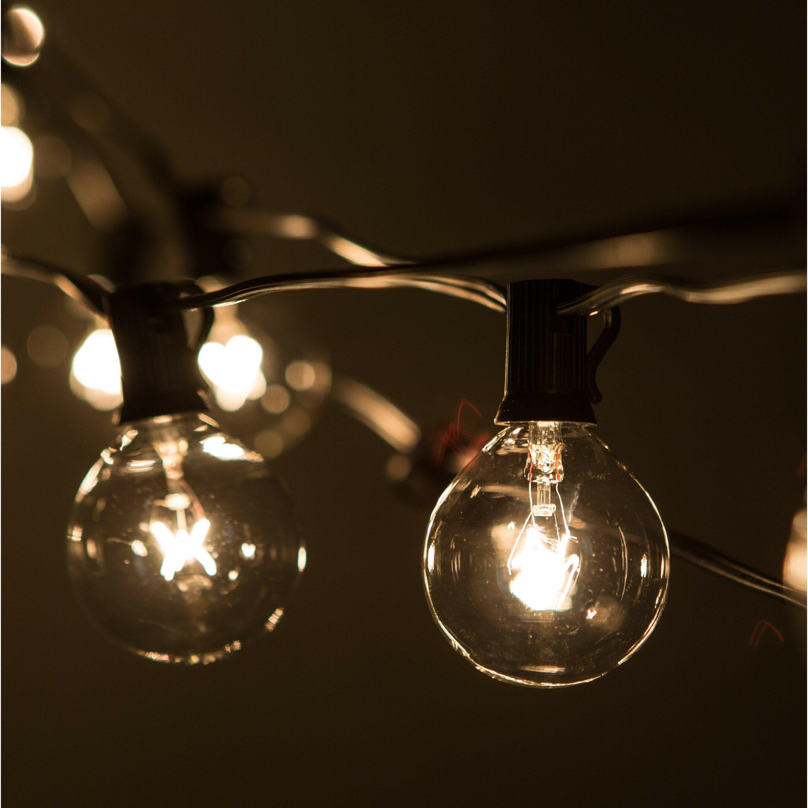 Globe String Lights 50 Ft : HometownEvolutionInc 50-Light 50 ft. Globe String Lights & Reviews Wayfair