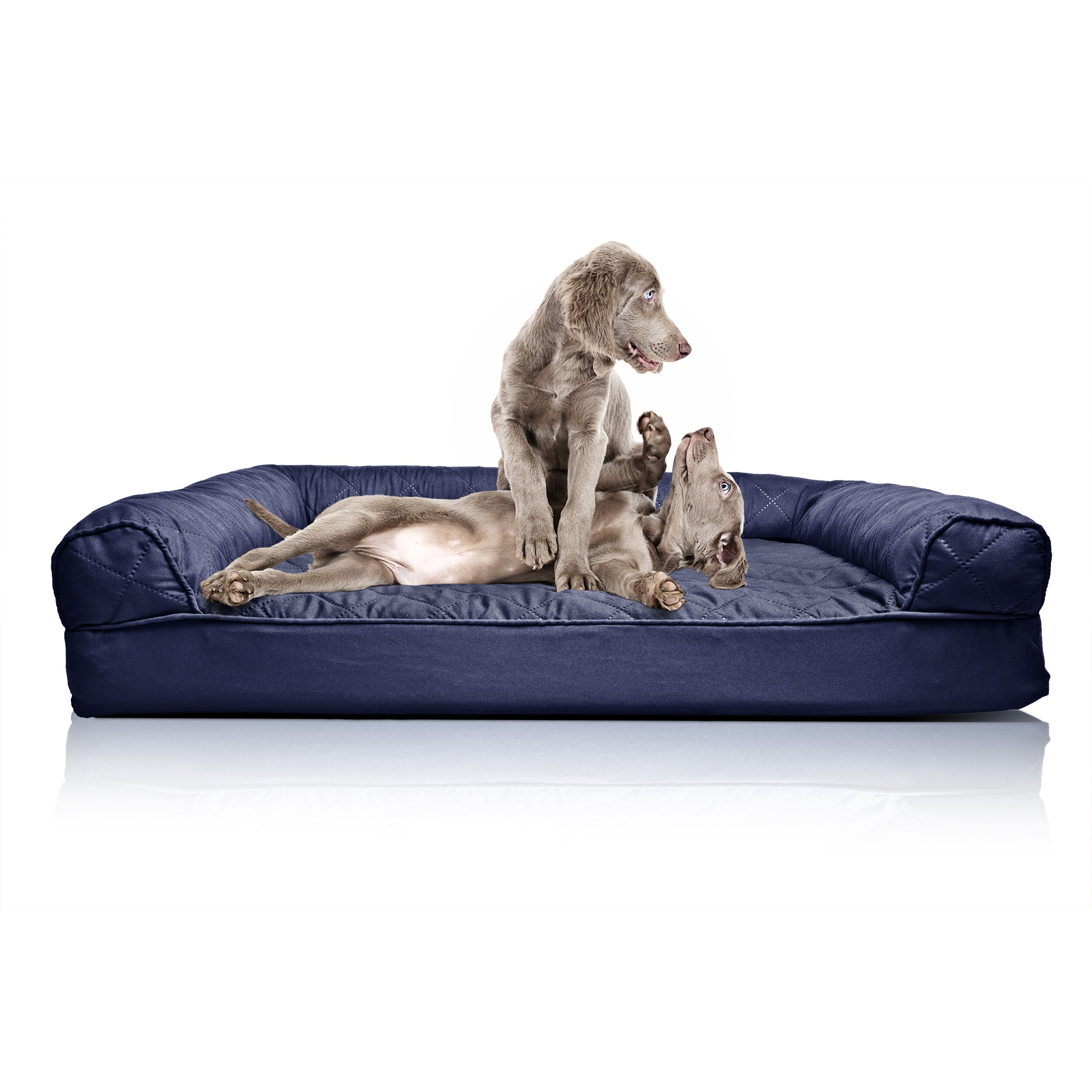 Dog beds that look like couches - Sofa Like Dog Beds Noten Animals