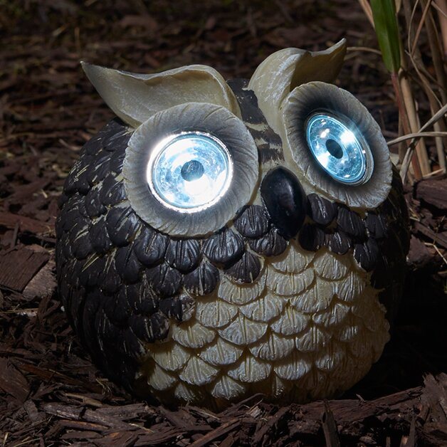Garden Owls Solar Light Reviews Joss Main